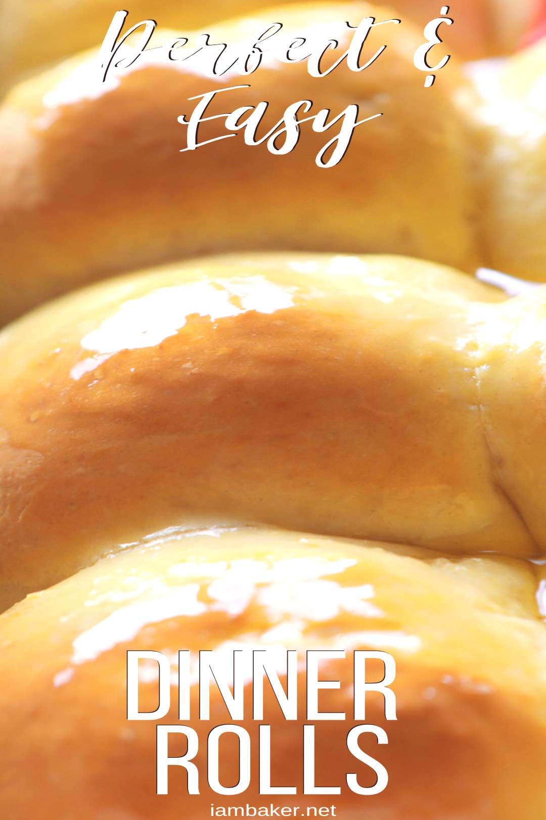 This recipe has been handed down for generations! Homemade dinner rolls that are easy peasy!